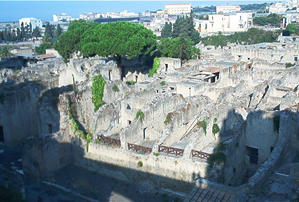 An overview of the Ercolano Scavi